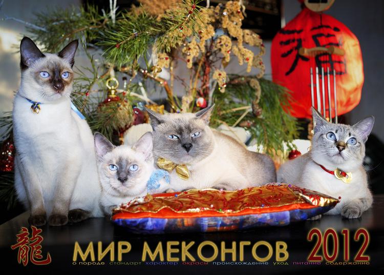 Мир меконгов 2012